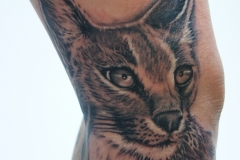 angelika gross tattoo Caracal