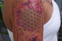 angelika-gross-tattoo-Lebensblume, Kirschblüten aquarell