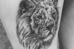 angelika gross tattoo black and grey Lion