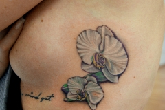 angelika gross tattoo weiße orchideen